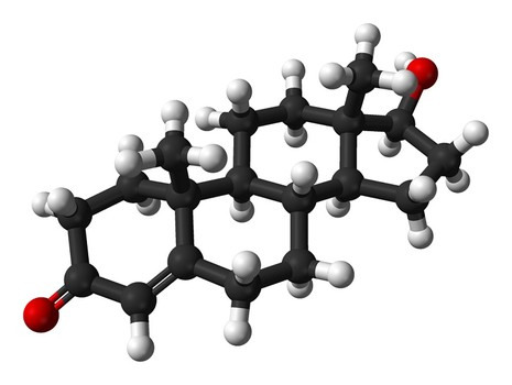 5 natural ways to boost your testosterone