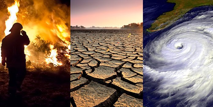 Climate change is affecting all life on Earth – and that's not good news for humanity (Study)