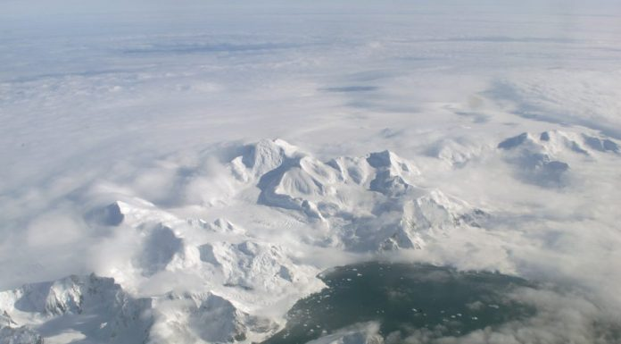Ecosystem Exposed After Antarctica's Giant Iceberg Broke Free, Says New Study