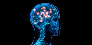 Brain Implant Boosts Memory, Says New Study