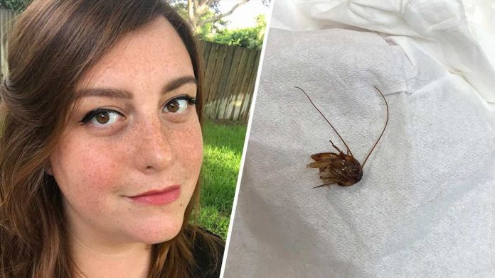 Florida Woman wakes up to find cockroach in her ear
