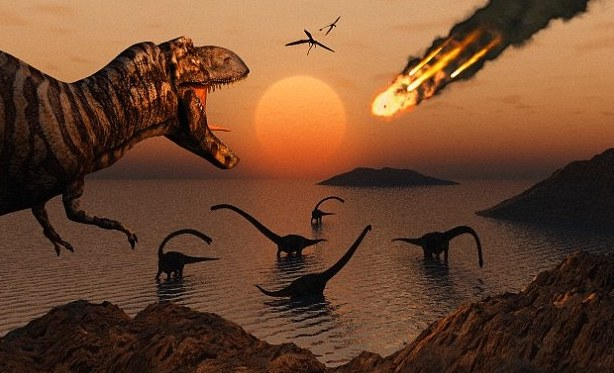 These are the creatures that survived the dinosaur-killing asteroid