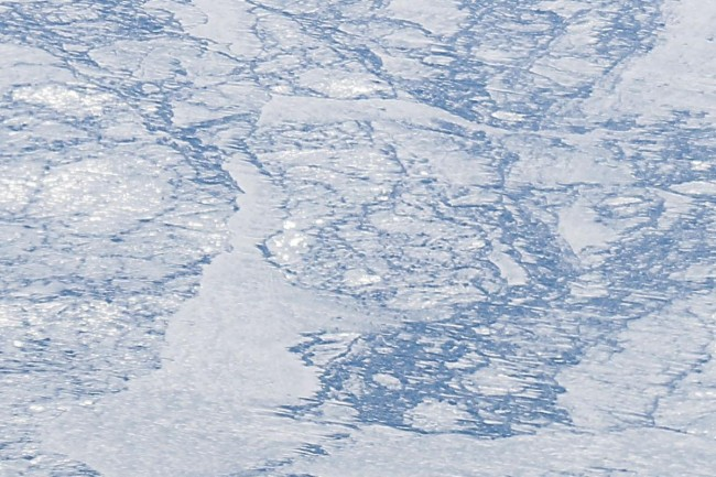 Study: Greenland Ice Stream is extra sensitive to environmental changes