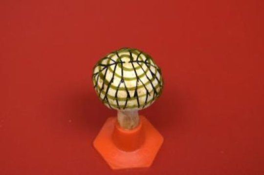 Scientists create 'bionic mushroom' that can power an LED bulb