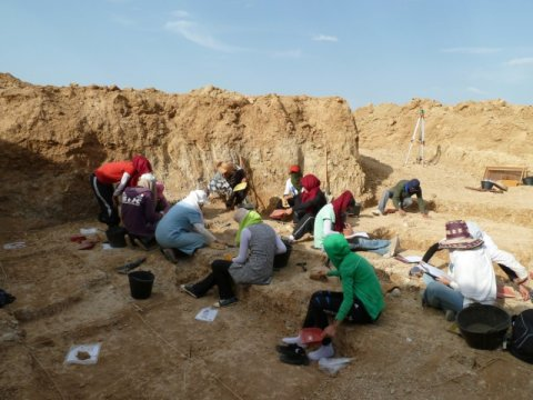 Ancient tools found in North Africa could 'rewrite human origin story'