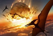 Researchers Find Direct Evidence of 'Day One' of Dinosaurs' Extinction