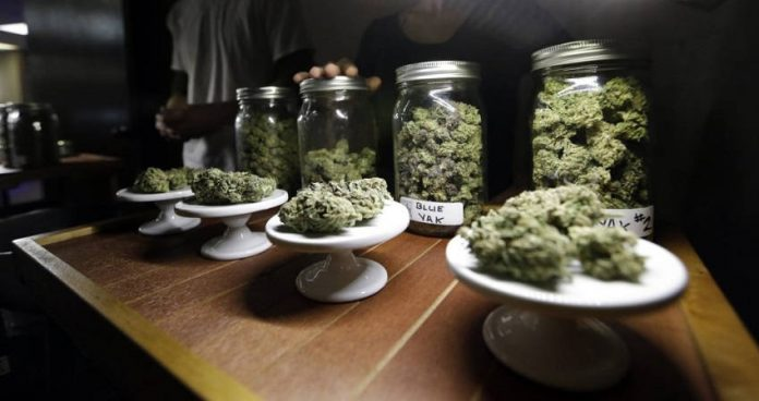 Gallup Poll: American Support Of Legal Marijuana Is At Its Highest Level Ever