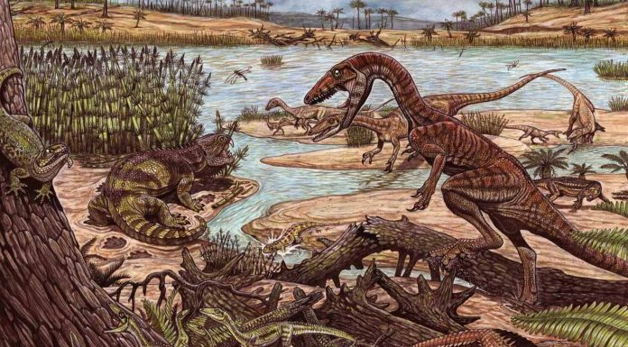 New fossil rewrites the history of the dinosaurs, new research