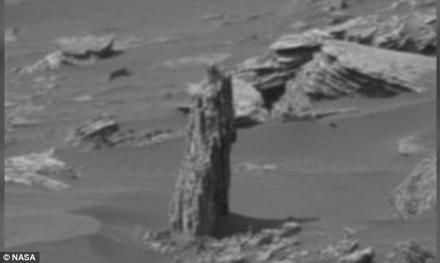 Is there life on Mars? Alien hunter claims there is an ancient tree stump (Watch)