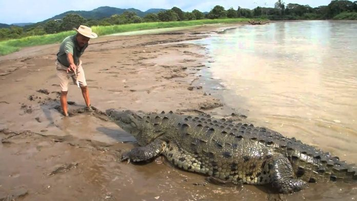 British journalist: Crocodile suspected in death of UK reporter in Sri Lanka