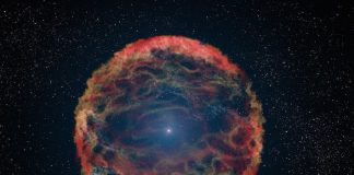 Scientists Discover A Star That Would Not Die