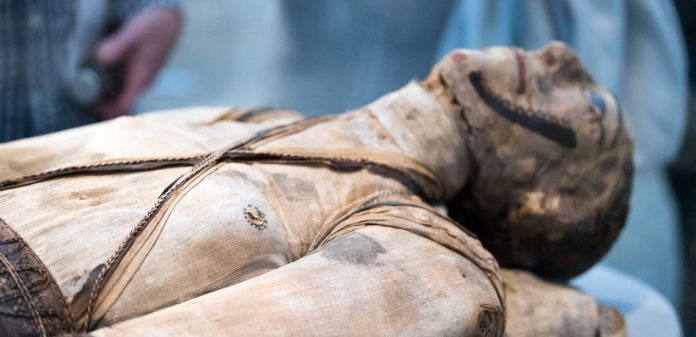 DNA Analysis Reveals Mummies' Familial Relationship