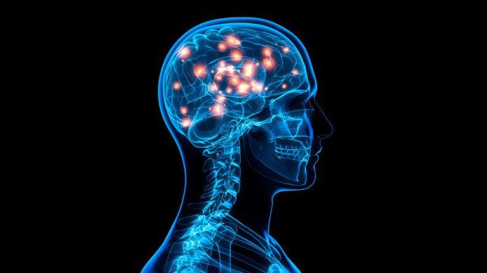 Brain Implant Boosts Memory, Says New Study