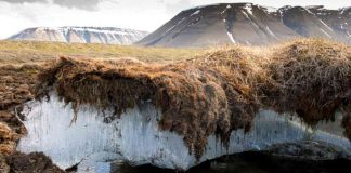Researchers Find Massive Reserves of Mercury Hidden in Permafrost