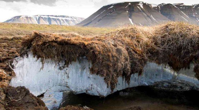 Researchers Find Massive Reserves of Mercury Hidden in Permafrost