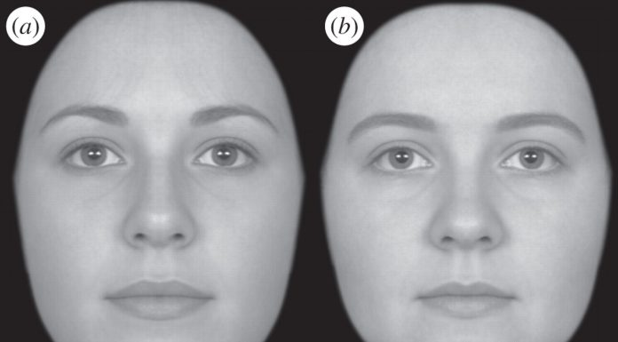 Study: Different genes that shape our face identified