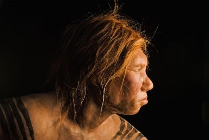 Study: Humans Mated Outside Our Species Three Times