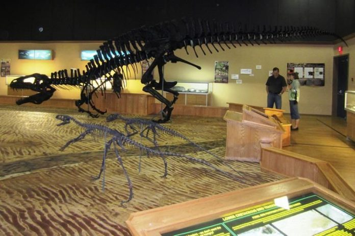 BC dinosaur museum faces extinction