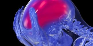High blood pressure and brain health are linked