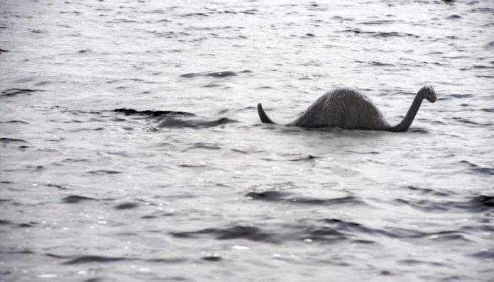 Kiwi researchers to lead DNA hunt for Loch Ness monster