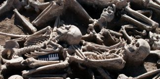 Researchers discover a modern foe in ancient skeletons