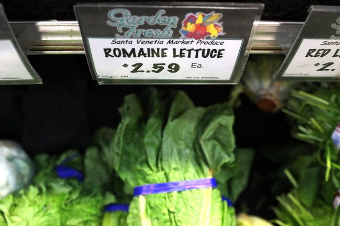 Contaminated lettuce kills five, downs 200 in US