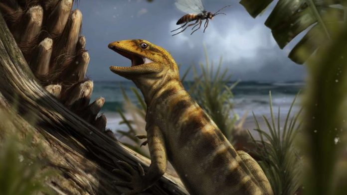 Study: 240 million-year-old 'mother of all lizards' found