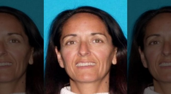 Girl Scouts, Cancer Organization Embezzling: US Woman Arrested