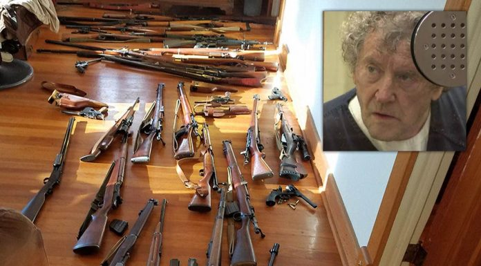Nathan Brogan: guns seized from man accused of shooting San Diego
