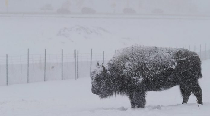 Colorado Wyoming snow storm: threaten power outages in Rockies