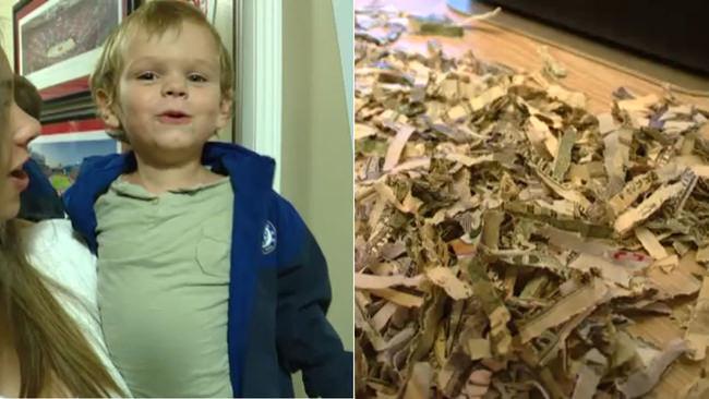 Toddler shreds cash? 'I've never heard of a kid shredding a grand'