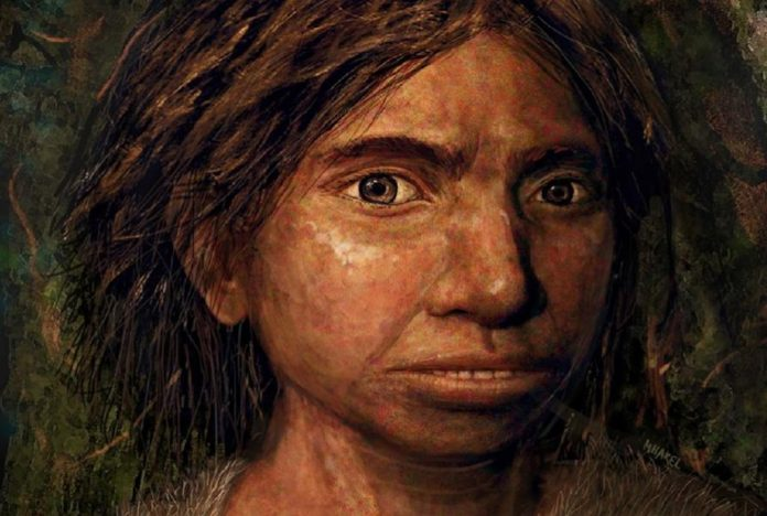 Researchers Recreate Skull of Mysterious Neanderthal Cousin