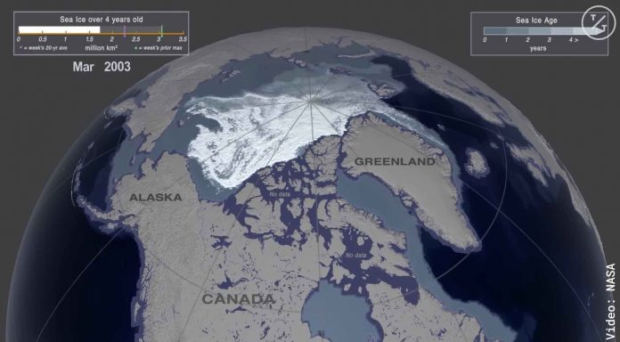 Watch: NASA Visualization Shows Decline of Arctic Sea Ice Over the Past 35 Years