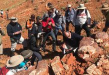 Researchers Investigate Ancient Life in Australia