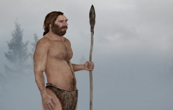 Researchers link Neanderthal extinction to human diseases