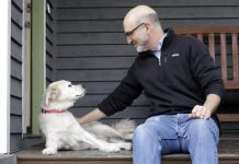 Study: 10K Dogs Needed for a Study on Canine and Human Aging