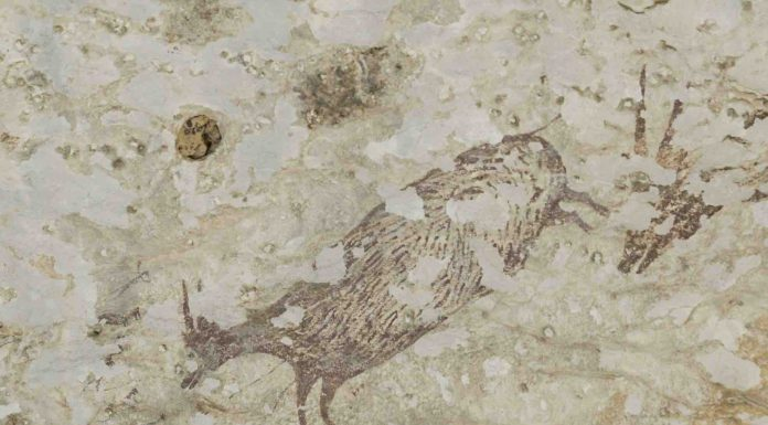 Researchers Reveal What They Found in The World's Oldest Cave Art