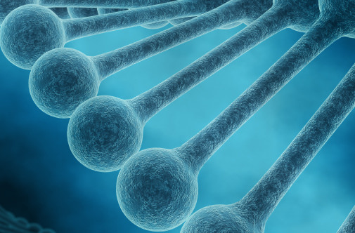 Natural selection's reach extends beyond genome into epigenome, research