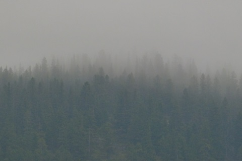 Report: Exploring the impact of wildfire smoke in Western Canada