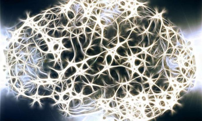 Researchers breach brain barriers to attack tumors