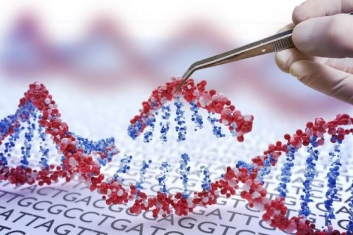 CRISPR gene cuts may offer new way to chart human genome