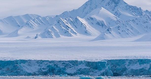 Report: Red alert as Arctic lands grow greener