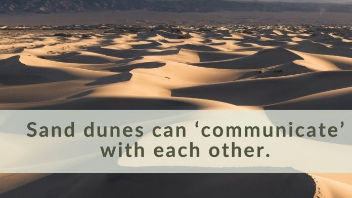 Report: Sand dunes can 'communicate' with each other