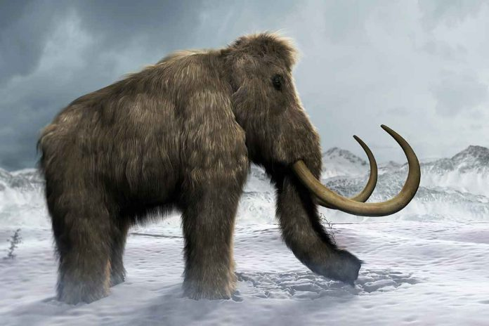 Study: Hot pots helped ancient Siberian hunters survive the Ice Age