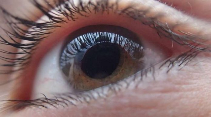 Study breakthrough for leading cause of blindness