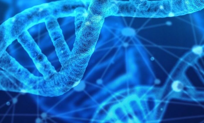 Report: 'Directing' evolution to identify potential drugs earlier in discovery