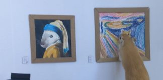 Tiny Gerbils Visit Tiny gallery With Custom Gerbil Art