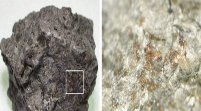 4-billion-year-old nitrogen-containing organic molecules discovered in Martian meteorites (Study)