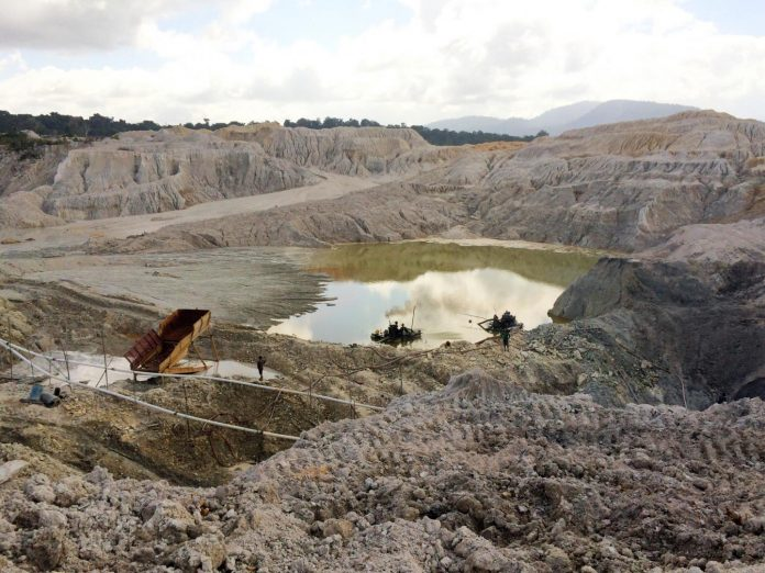 Gold mining restricts Amazon rainforest recovery