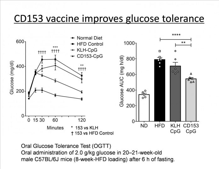 A vaccine targeting aged cells mitigates metabolic disorders in obese mice